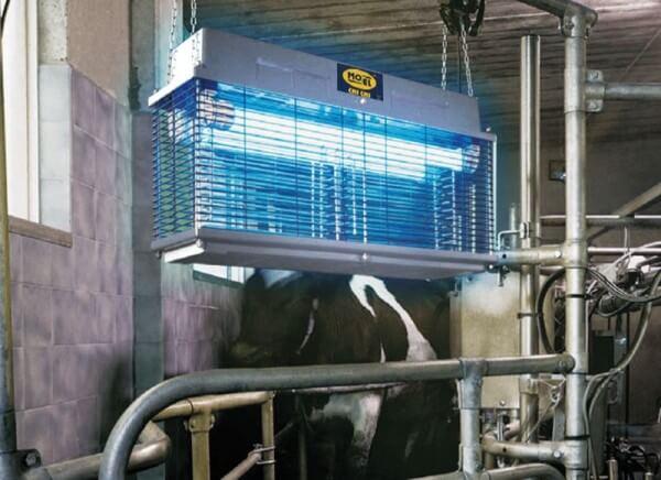 Elektrische Insektenfalle für Tierzucht und Landwirtschaft