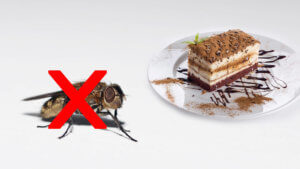 Fliegenfallen für Konditorei & Kaffee: Warum Klebefallen die perfekte Lösung sind