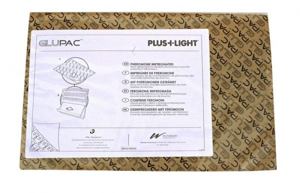 GLUPAC glueboards black for PlusLight Insekt killer Insect-o-cutor INF309