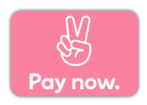 Pay with Klarna Pay Now