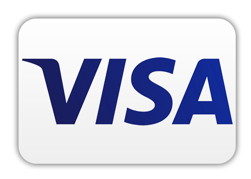 Pay with Visa Card